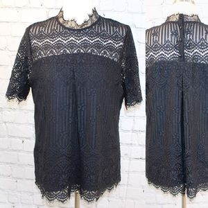 Pleione lace short sleeve top